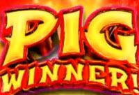 Pig Winner Slot